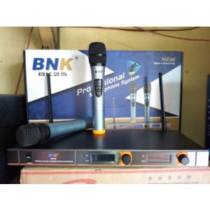 Bnk microphone system